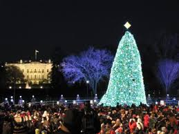 Tree Lighting Washington